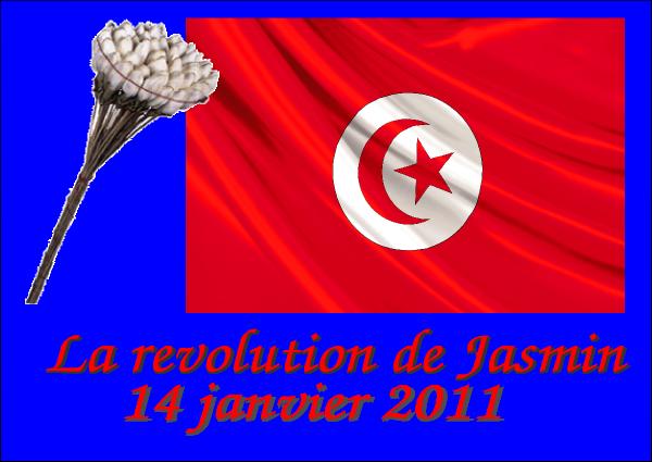 Tunisie la révolution de jasmin